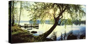 Trees and pier by the Vuoksi River, Imatra, Finland