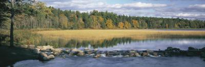 Trees Around a Lake, Itasca State Park, Minnesota, USA