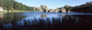 Trees around Lake, Sylvan Lake, Black Hills, Custer State Park, Custer County, South Dakota, USA