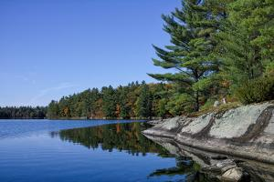 Trees at small lake in Muskoka, Ontario, Canada