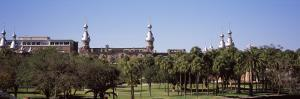 Trees in a Campus, Plant Park, University of Tampa, Tampa, Hillsborough County, Florida, USA