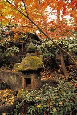 Trees in a Garden, Nezu Institute of Fine Arts, Tokyo Prefecture, Japan