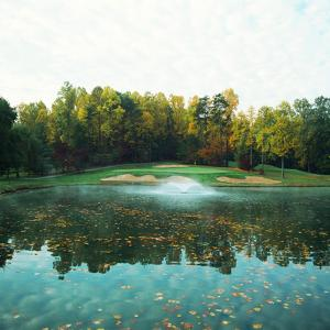 Trees in a Golf Course, Congressional Country Club, 11th Gold Nine, Potomac, Maryland, USA