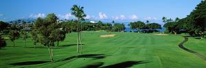 Trees , Kaanapali Golf Course, Maui, Hawaii, USA