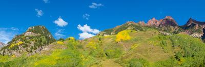 Trees on mountain, Maroon Bells, Maroon Bells-Snowmass Wilderness, White River National Forest,...