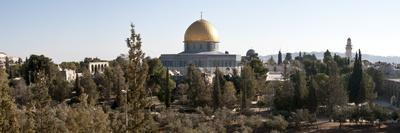 https://imgc.allpostersimages.com/img/posters/trees-with-mosque-in-the-background-dome-of-the-rock-temple-mount-jerusalem-israel_u-L-PGDZR50.jpg?p=0