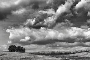 Looking Northwest by Trent Foltz