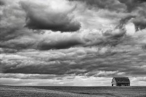 Rolling Field by Trent Foltz