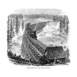Trestle Bridge on the Union Pacific Railroad, USA, 1876