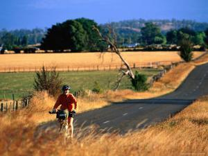 Cyclist, with Great Western Tiers Mountain Range in the Background, Bracknell, Australia by Trevor Creighton
