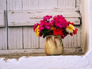 Flowers in Vase on Window Ledge, Megala Horafia, Greece by Trevor Creighton