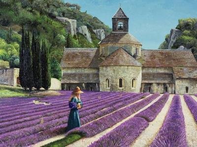 Lavender Picker, Abbaye Senanque, Provence