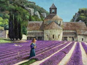 Lavender Picker, Abbaye Senanque, Provence by Trevor Neal