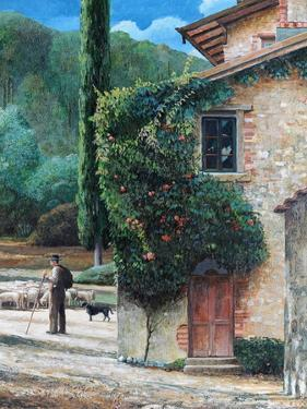 Shepherd, Peralta, Tuscany, 2001 by Trevor Neal
