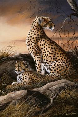 Cheetahs of Dusk by Trevor V. Swanson