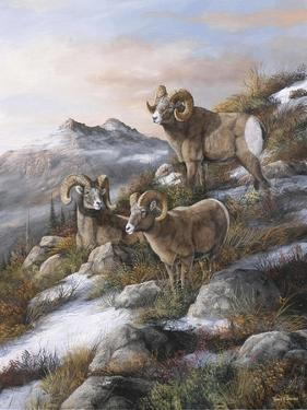 High Country Kings by Trevor V. Swanson