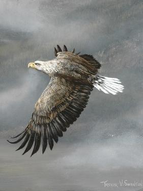 In Flight by Trevor V. Swanson