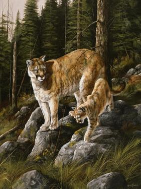 Mother and Child (Mt. Lions) by Trevor V. Swanson