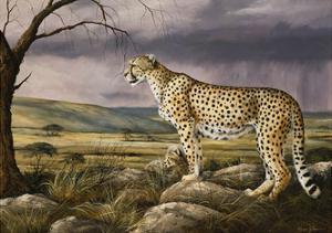 The Overlook by Trevor V. Swanson