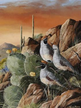 Trio in Spring by Trevor V. Swanson