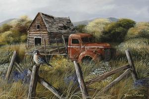 Well Worn Perch by Trevor V. Swanson