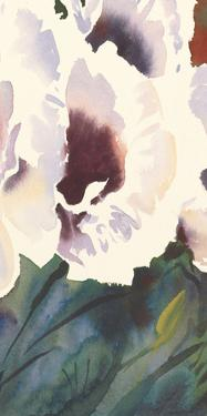 White Orientals II by Trevor Waugh