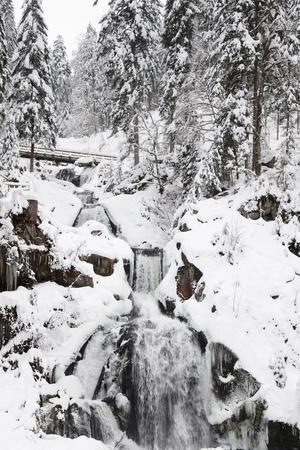 https://imgc.allpostersimages.com/img/posters/triberg-waterfalls-in-winter-triberg-black-forest-baden-wurttemberg-germany-europe_u-L-PWFMQ60.jpg?p=0