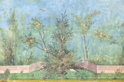 Triclinium of the House of Livia, Fresco, 20 - 10 Bc, National Museum of Rome