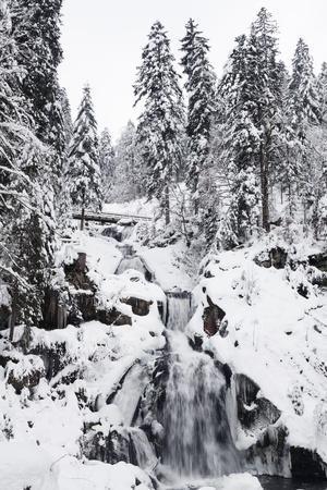 https://imgc.allpostersimages.com/img/posters/trieberg-waterfalls-in-winter-black-forest-baden-wurttemberg-germany_u-L-Q1EY0SJ0.jpg?artPerspective=n