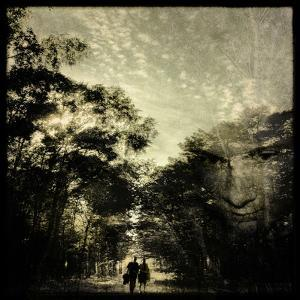 A Man and a Woman Walking Along a Path Through Woodland by Trigger Image