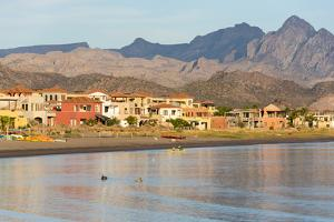 Mexico, Baja California Sur, Sea of Cortez. Kayakers in the morning. by Trish Drury