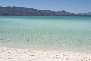 Mexico, Baja California Sur, Sea of Cortez. White sand beach os Isla Coronado by Trish Drury
