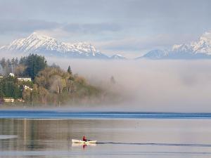 Rower with Fog Bank, Bainbridge Island, Washington, USA by Trish Drury