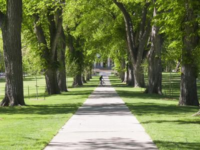 Students Walk in the Oval, Fort Collins, Colorado, USA