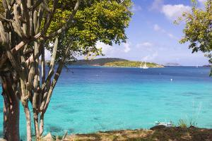 Us Virgin Island, St John. View of St Thomas Sailboats and Snorkelers by Trish Drury