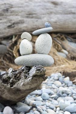 Us, Wa, Dungeness Spit. Rock Cairns on Driftwood by Trish Drury