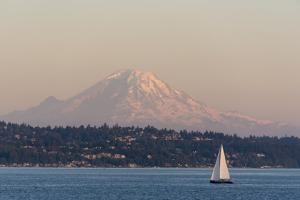 USA, Washington State, Seattle. Sailboat passes in front of Mt. Rainier pink dusk light by Trish Drury