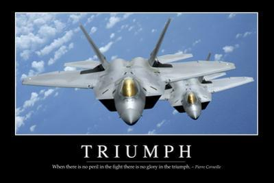 Triumph: Inspirational Quote and Motivational Poster