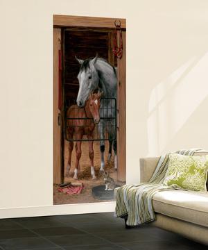 Trompe L'Oiel Stable Door Wall Accent Huge Mural Art Print Poster