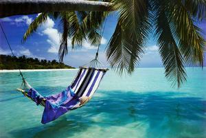 Tropical Beach (Hammock Under Tree, Huge) Art Poster Print