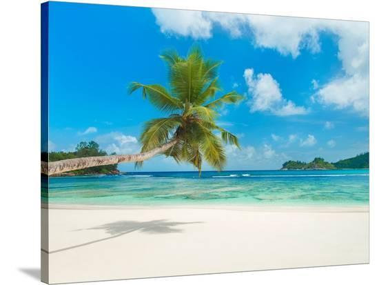 Tropical beach, Seychelles (detail)--Stretched Canvas Print