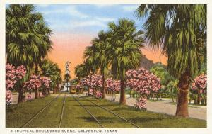 Tropical Boulevard, Galveston, Texas