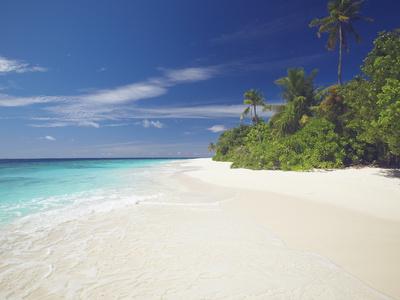 https://imgc.allpostersimages.com/img/posters/tropical-island-and-lagoon-maldives-indian-ocean-asia_u-L-PFNYTK0.jpg?p=0