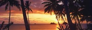 Tropical Sunset Panorama Art Print Poster