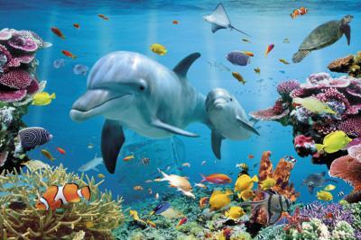 https://imgc.allpostersimages.com/img/posters/tropical-underwater-ocean_u-L-F50AYT0.jpg?artPerspective=n