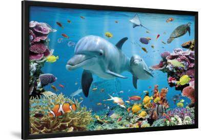Tropical Underwater-Ocean