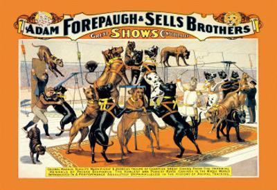 Troupe of Champion Great Danes: Adam Forepaugh and Sells Brothers