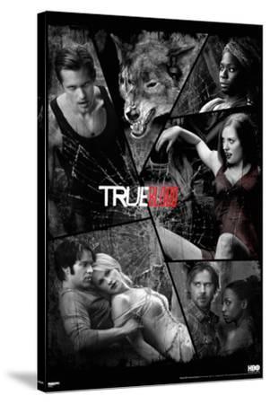 True Blood - Shattered Mirror