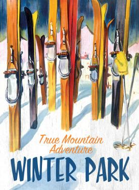 True Mountain Adventure Winter Park