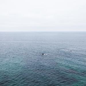 Ocean Skyline, Seascape, Malibu, California by Tuan Tran